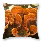 Bracket Fungi Throw Pillow