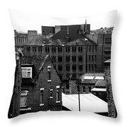 Bradders Throw Pillow