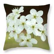 Bradford Pear Flower Throw Pillow