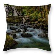 Brandy Creek Falls Throw Pillow
