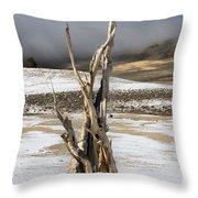 Bristlecone Fog And Sierra Nevada 1 Throw Pillow