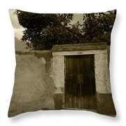 Brown Door In A White And Green Wall Throw Pillow