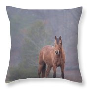 Brown Horse In Fog Throw Pillow