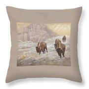 Buffalo Under The Alpenglow Throw Pillow