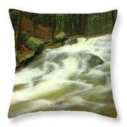 Buffam Brook Cascades Throw Pillow