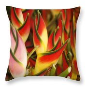 Bunch Of Heliconia Throw Pillow