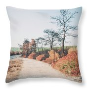 Burned Landscape Throw Pillow