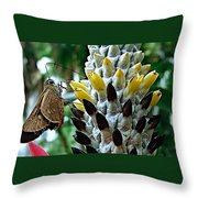 Butherfly Throw Pillow