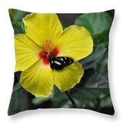 Butterflies Are Blooming 25 Throw Pillow