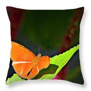 Butterfly 22 Throw Pillow