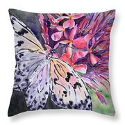Butterfly Enchantment Throw Pillow