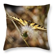 Butterfly Throw Pillow by Kelley King