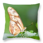 Butterfly On Leaf Throw Pillow