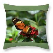 Long Winged Beauty Throw Pillow