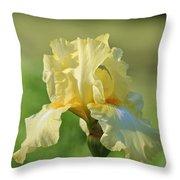 Buttery Soft  Throw Pillow