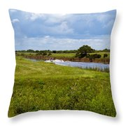 C54 Canal In Florida Throw Pillow