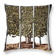 Cactus: Opuntia, 1613 Throw Pillow
