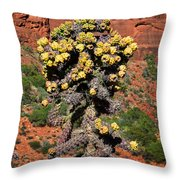 Cactus Outside The Chapel Of The Holy Cross Throw Pillow