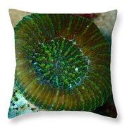 Cactus Ring Coral Throw Pillow