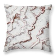 Calcium Deposits From Thermal Springs, Pamukkale - Turkey  Throw Pillow