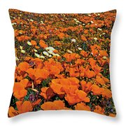 California Poppies Desert Dandelions California Throw Pillow