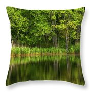 Calming Trees Throw Pillow