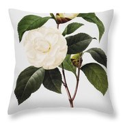 Camellia, 1833 Throw Pillow
