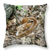 Camouflaged Fawn Throw Pillow
