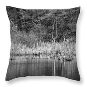 Canada Goose Couple Bw Throw Pillow