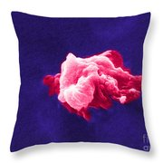 Cancer Cell Death, Sem 6 Of 6 Throw Pillow