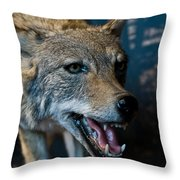 Canis Species Throw Pillow