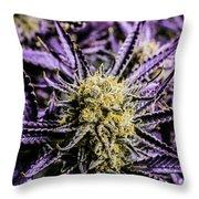 Cannabis Macro Throw Pillow