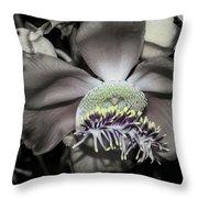 Cannonball Flower Throw Pillow