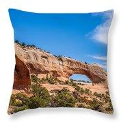 Canyon Badlands And Colorado Rockies Lanadscape Throw Pillow