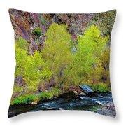 Canyon Color Throw Pillow