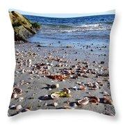 Cape Cod Beach Finds Throw Pillow