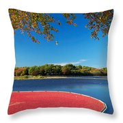 Cape Cod Cranberry Bog Throw Pillow