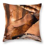 Capitol Reef 9740 Throw Pillow