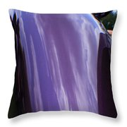 Car Reflection 12 Throw Pillow