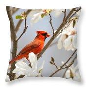 Cardinal In Magnolia Throw Pillow