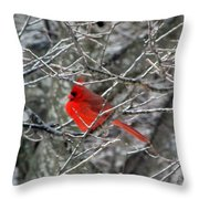 Cardinal On Icy Branches Throw Pillow