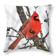Cardinal Red Throw Pillow
