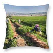 Carrot Harvest Throw Pillow