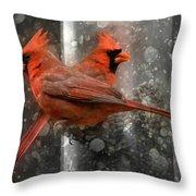 Cary Carolina Cardinals  Throw Pillow
