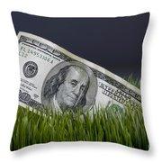 Cash In The Grass. Throw Pillow