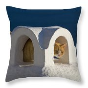 Cat On A Roof, Greece Throw Pillow