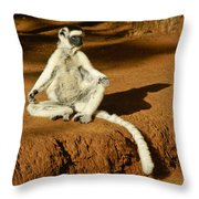 Catching Rays Throw Pillow