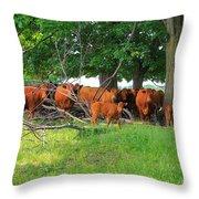 Cattle Herd Throw Pillow