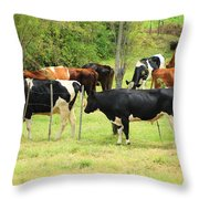 Cattle In A Pasture Throw Pillow