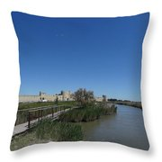 Cattle Of Saint Louis In Aigues Morte Throw Pillow